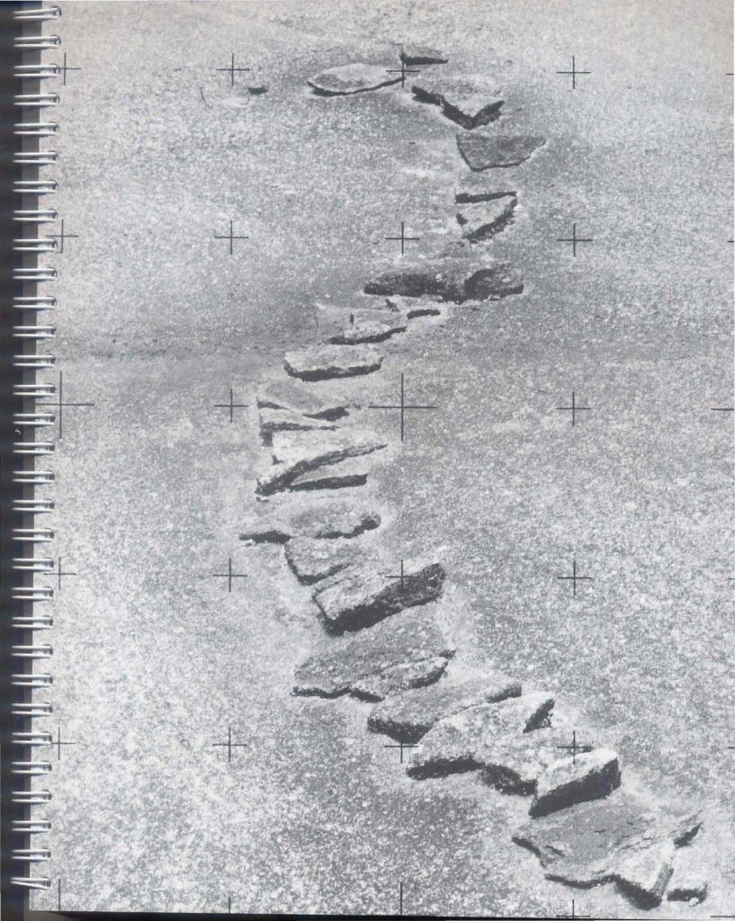 20_agenda_2003